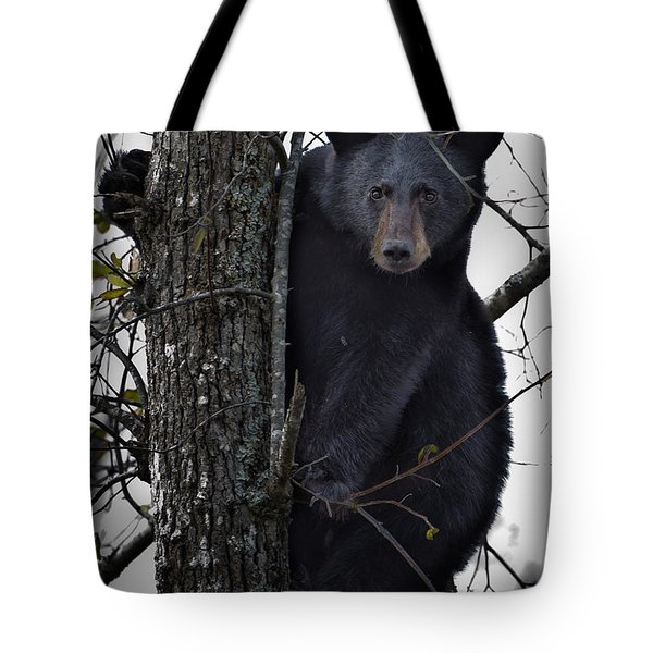 Hunting Berries Tote Bag