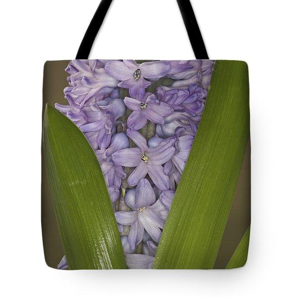 Hyacinth In Full Bloom Tote Bag