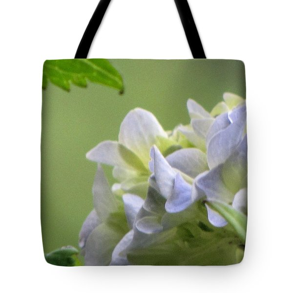 Tote Bag featuring the photograph Hydrangea Blossom by Katie Wing Vigil
