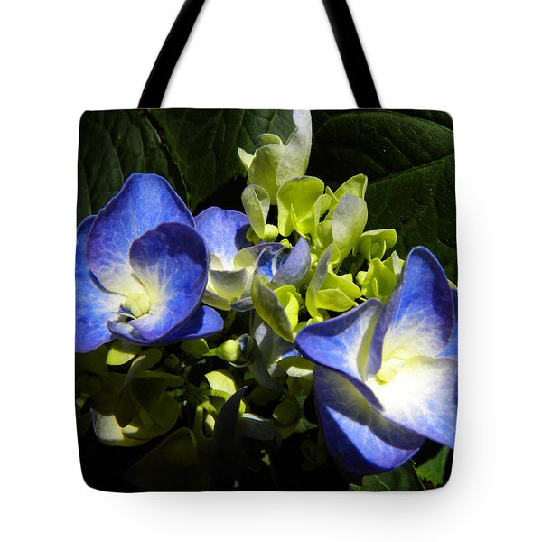 Hydrangea Duo Tote Bag by Sandi OReilly
