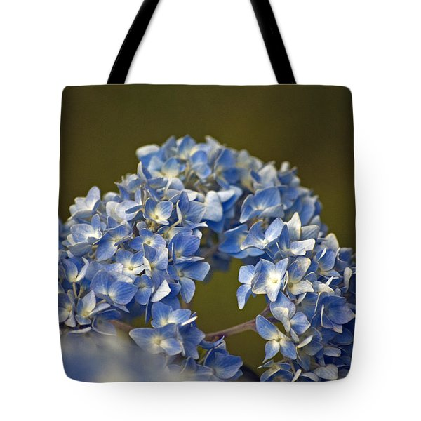 Tote Bag featuring the photograph Hydrangea by Elsa Marie Santoro