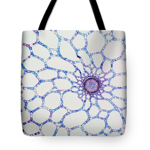 Hydrophyte Stem And Aerenchyma Tote Bag by M. I. Walker