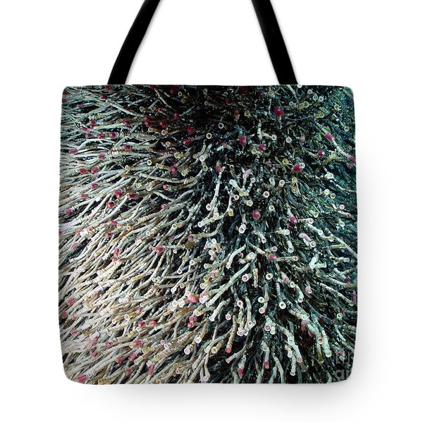 Hydrothermal Tubeworms Tote Bag