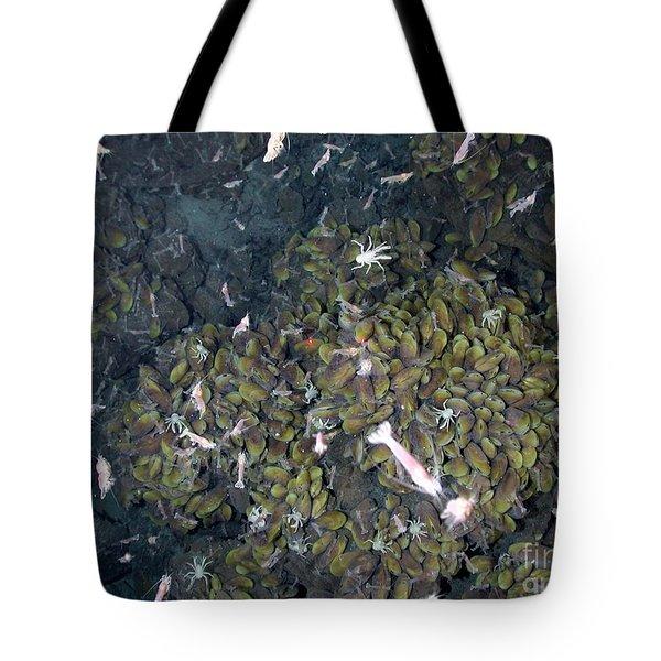 Hydrothermal Vent Community Tote Bag