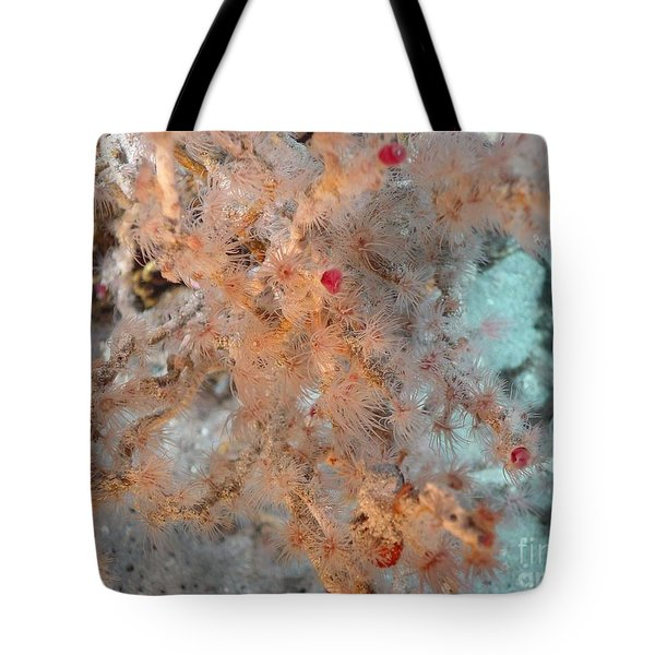 Hydrothermal Vent Tubeworms Tote Bag by Science Source