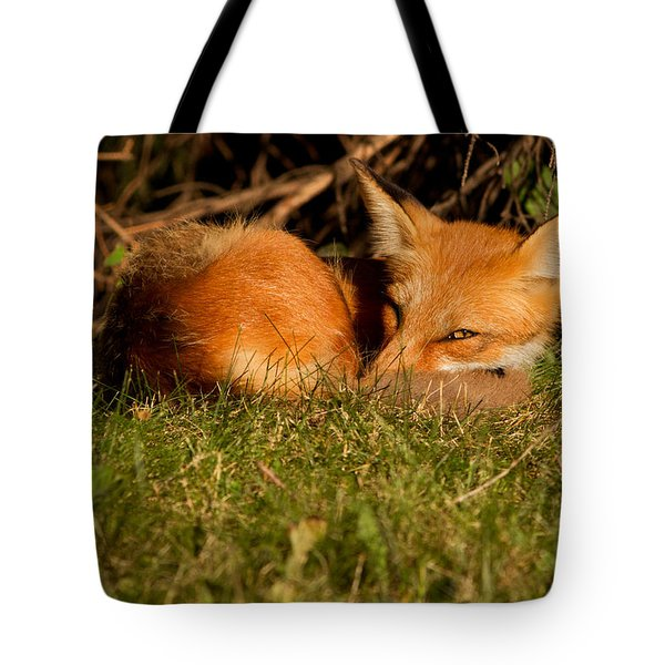 I Can See You Tote Bag by Mircea Costina Photography