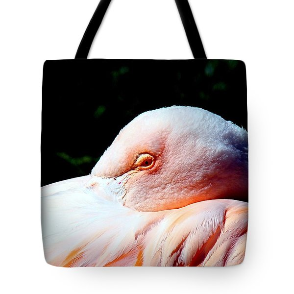 I See You Tote Bag by Nick Kloepping
