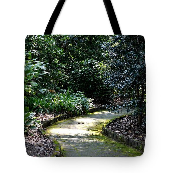 I Want To Walk With You Tote Bag by Maria Urso
