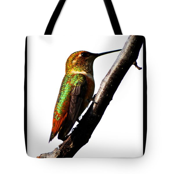 Tote Bag featuring the photograph Iaido Hummingbird by Susanne Still
