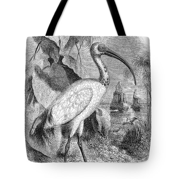 Ibis Tote Bag by Granger