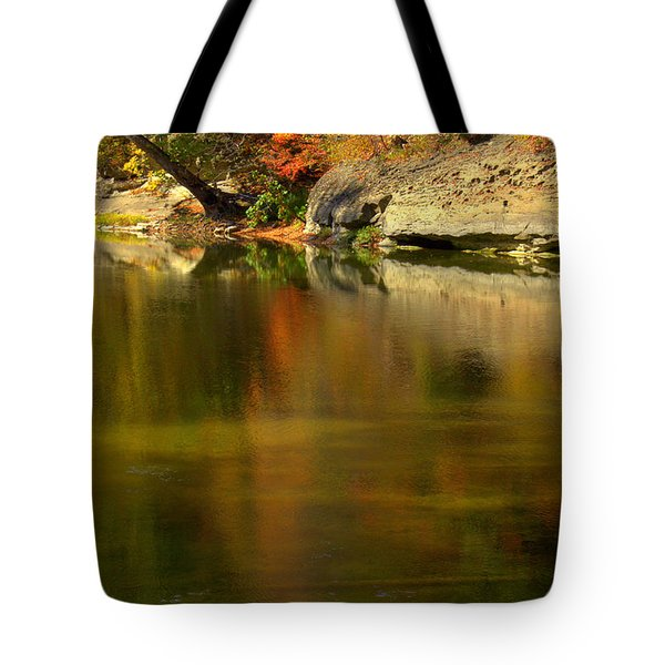 Ice Painting Tote Bag by Ed Smith