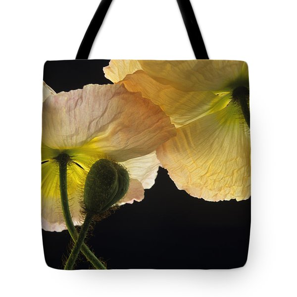 Tote Bag featuring the photograph Iceland Poppies 2 by Susan Rovira