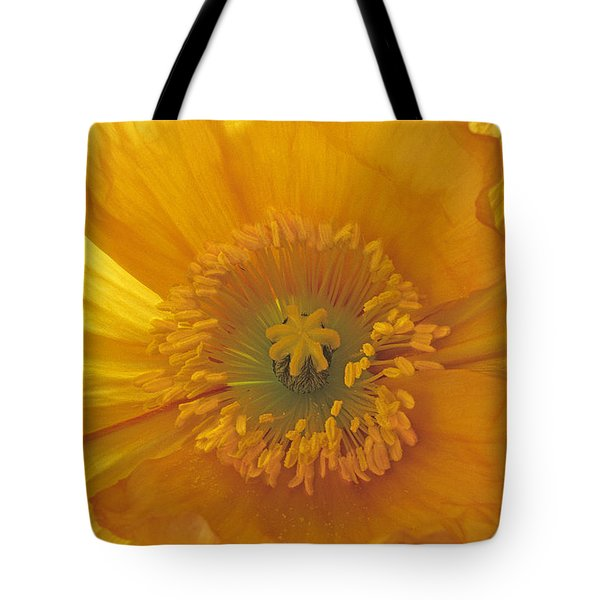 Tote Bag featuring the photograph Iceland Poppy 4 by Susan Rovira