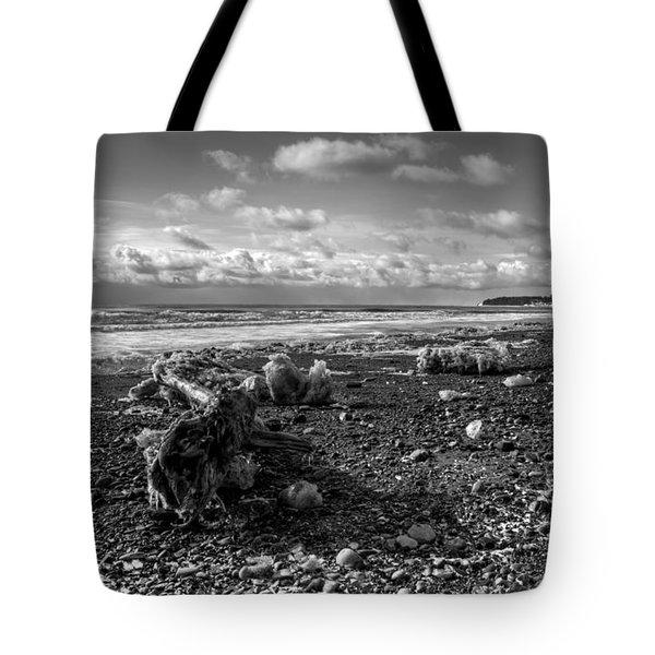 Icy Alaskan Beach Tote Bag by Michele Cornelius