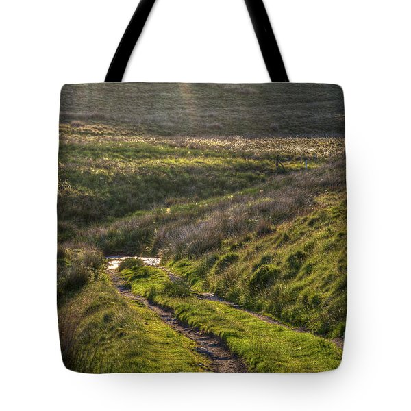 Icy Track Tote Bag by Clare Bambers