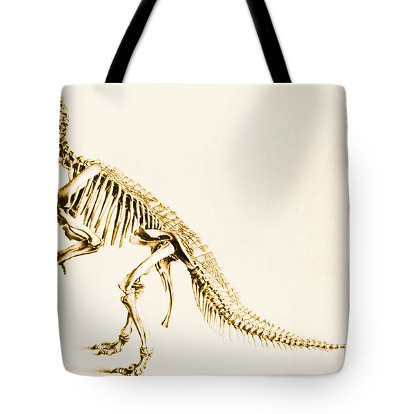 Iguanodon Mesozoic Dinosaur Tote Bag by Science Source