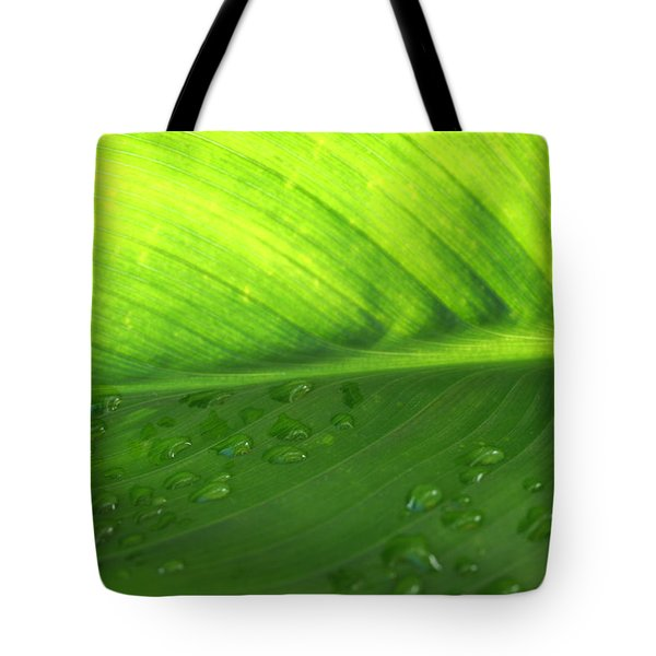 Illuminate Tote Bag by Angela Hansen