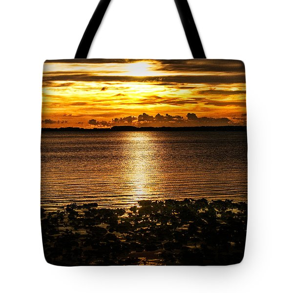 Illuminated Tote Bag by Christopher Holmes