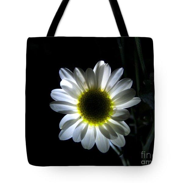 Illuminated Daisy Photograph Tote Bag