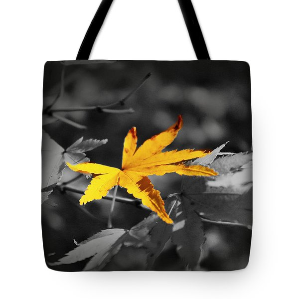 Illuminated Leaf Tote Bag by Mikki Cucuzzo