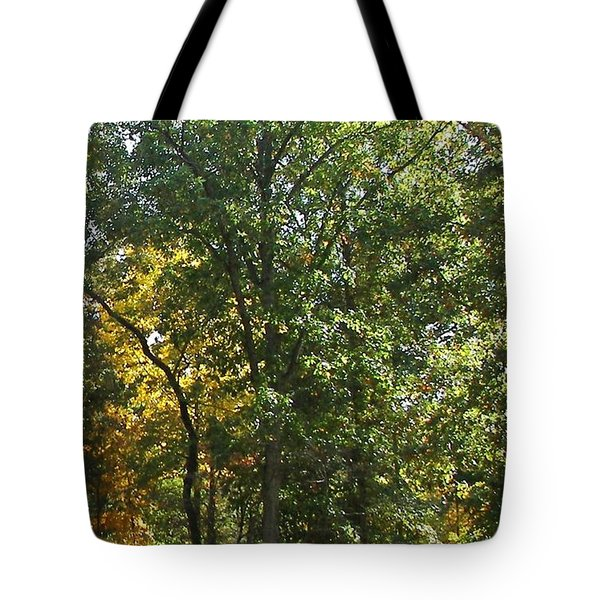 Tote Bag featuring the photograph Image Of Fall by Pamela Hyde Wilson