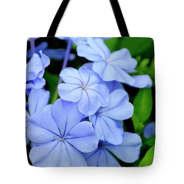 Imperial Blue Tote Bag