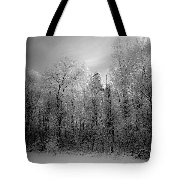 Impressionist Snow Tote Bag