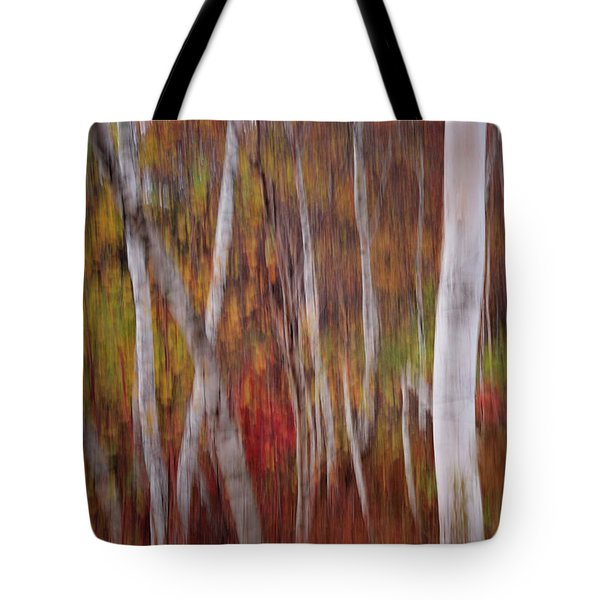 Abstract Impressions Vermont Birch Forest  Tote Bag