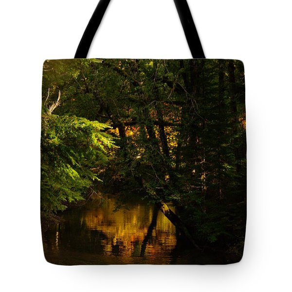 In Golden Moments Of Reflection Tote Bag