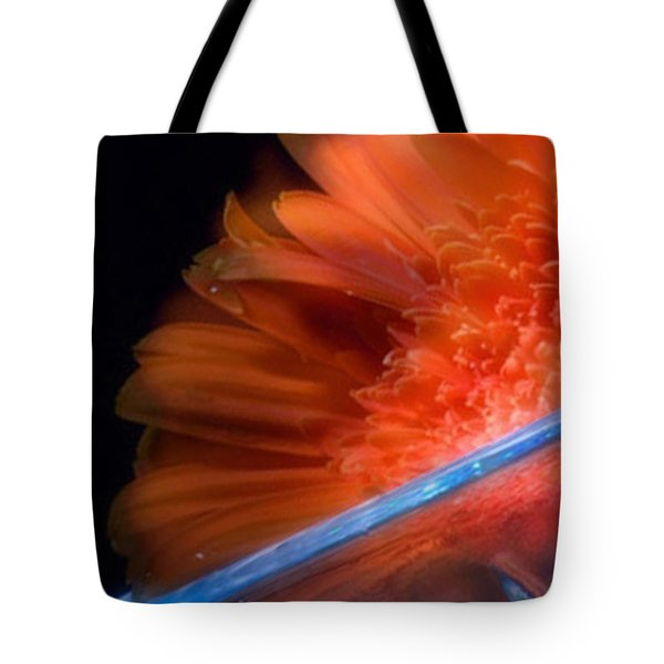 Tote Bag featuring the photograph In My Dreams- Beautiful Compliments by Janie Johnson
