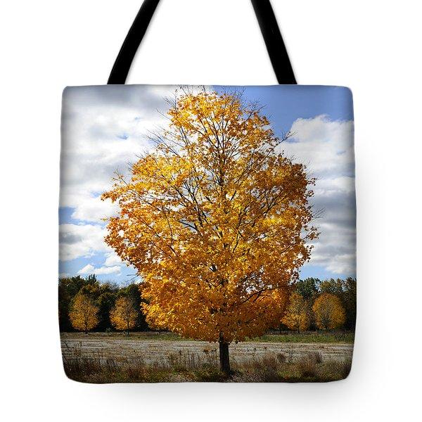 In My Dreams... Tote Bag by Luke Moore