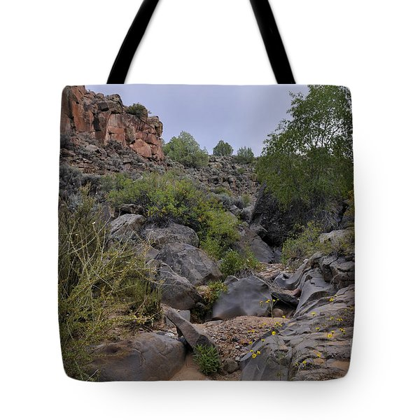 Tote Bag featuring the photograph In The Arroyo   by Ron Cline