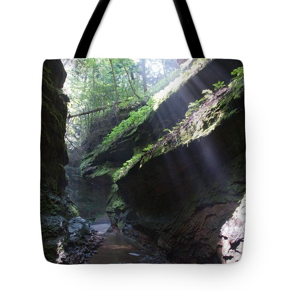 In The Cleft Of The Rock Tote Bag