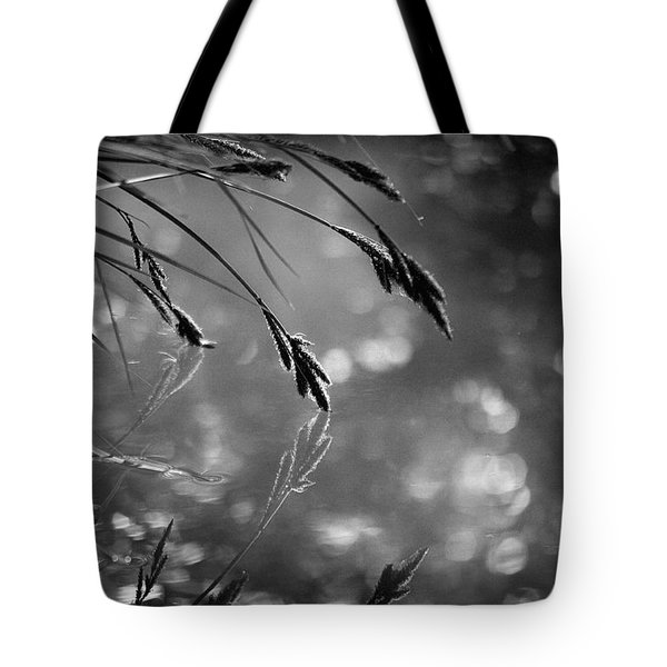 In The Early Morning Hours Tote Bag