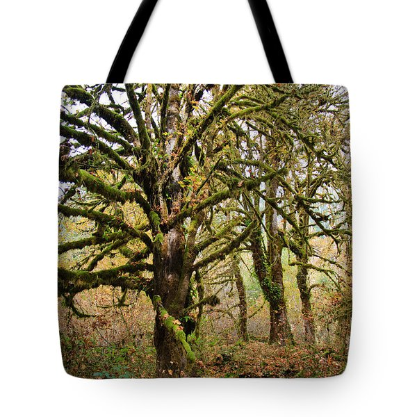 In The Rain Forest Tote Bag