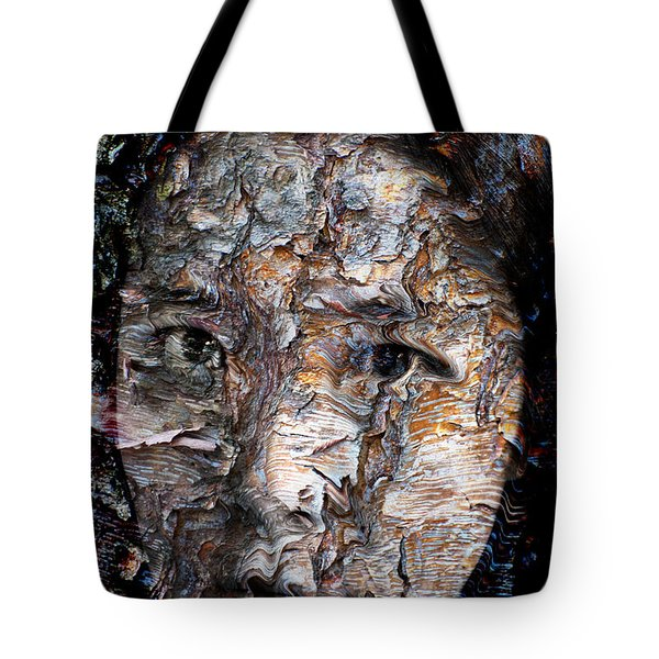 In Transition Tote Bag by Christopher Gaston
