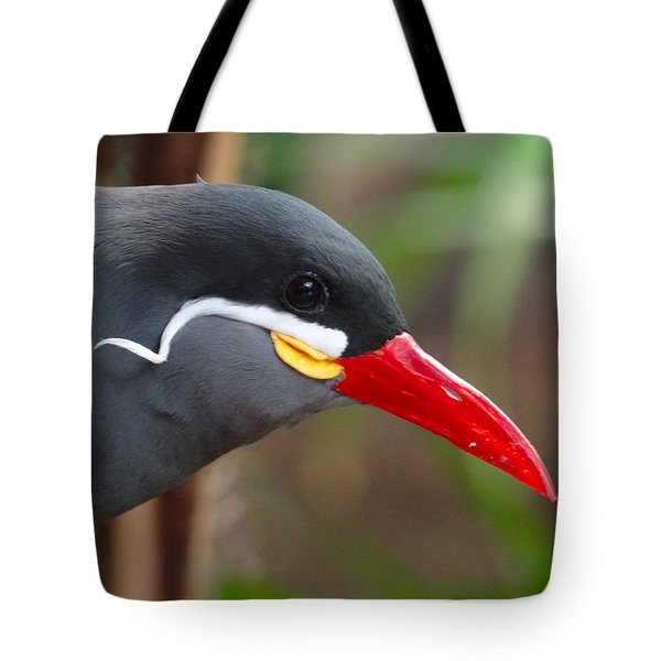 Inca Tern Tote Bag by Julia Wilcox