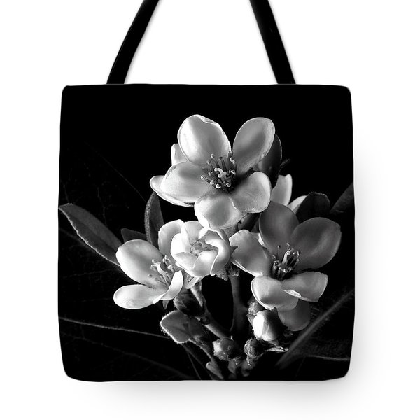 Indian Hawthorn In Black And White Tote Bag