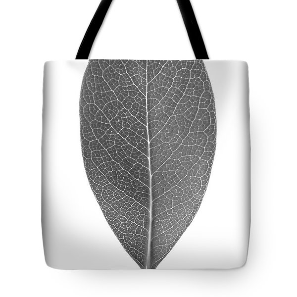 Indian Hawthorn Leaf Tote Bag