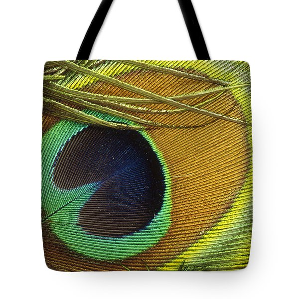 Indian Peafowl Pavo Cristatus Male Tote Bag by Gerry Ellis