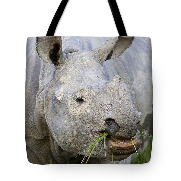 Indian Rhinoceros Grazing Kaziranga Tote Bag by Suzi Eszterhas
