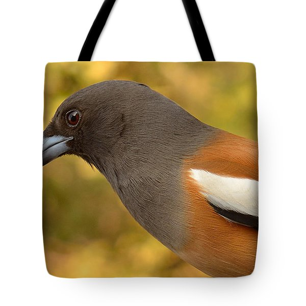 Indian Treepie. A Portrait. Tote Bag