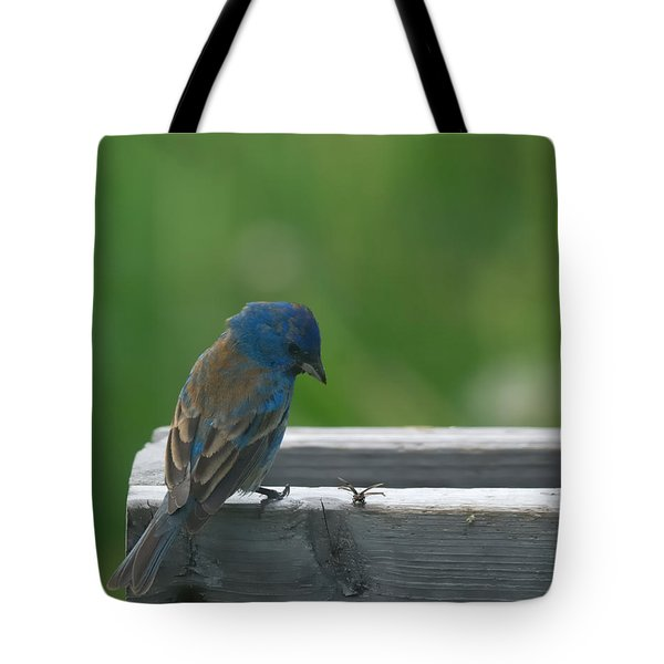 Indigo Bunting And Friend Tote Bag