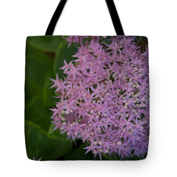 Tote Bag featuring the photograph Inner White by Joseph Yarbrough