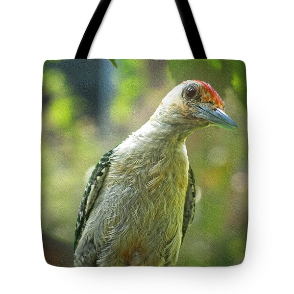 Tote Bag featuring the photograph Inquisitive Woodpecker by Debbie Portwood