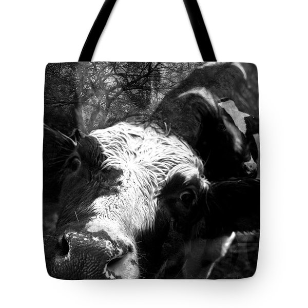 Inquisitive Zoey With Ellamay Tote Bag