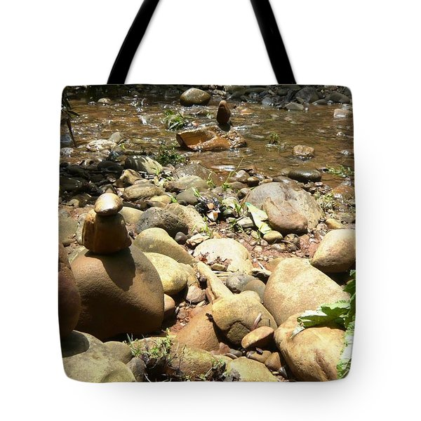 Installation By The River Tote Bag by Piety Dsilva