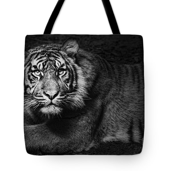 Intent Tote Bag by Andrew Paranavitana