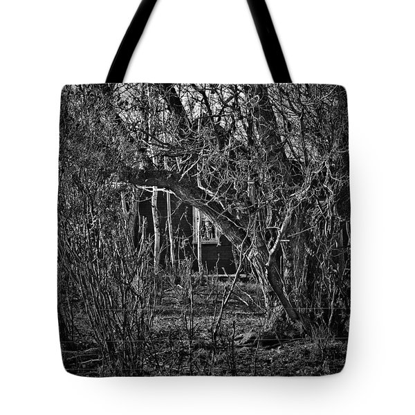 Into The Wilderness Tote Bag by Jerry Cordeiro