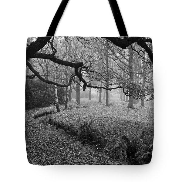 Tote Bag featuring the photograph Isabella Plantation by Maj Seda